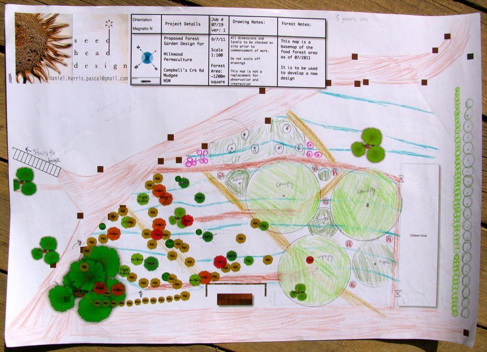 Forest Garden Layout ideas | Forest garden, Permaculture ...