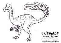 Oviraptor Colores