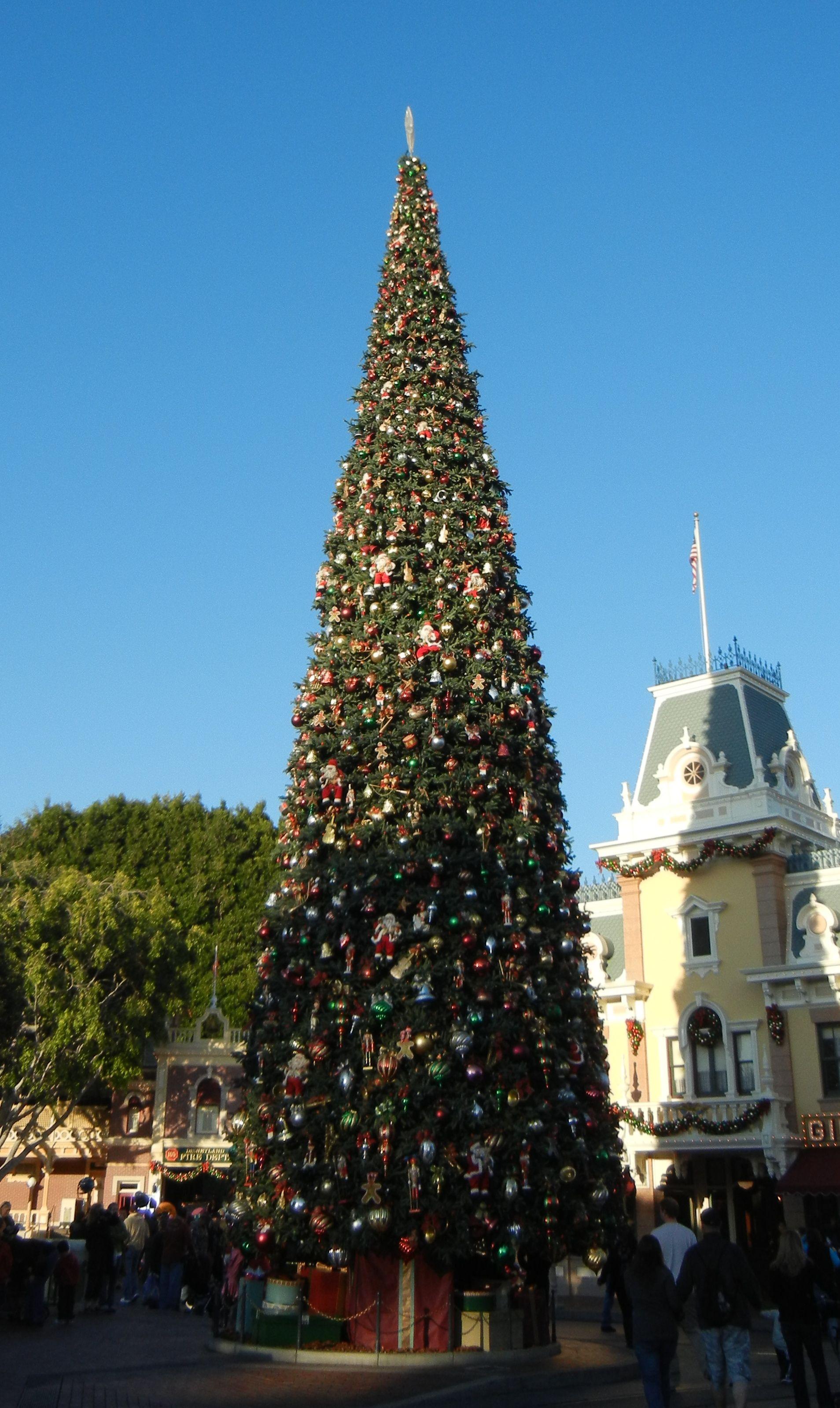 Christmas tree on Main Street Disneyland, CA   Outdoor ...