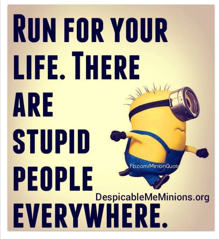 Minions  Stupid People Everywhere