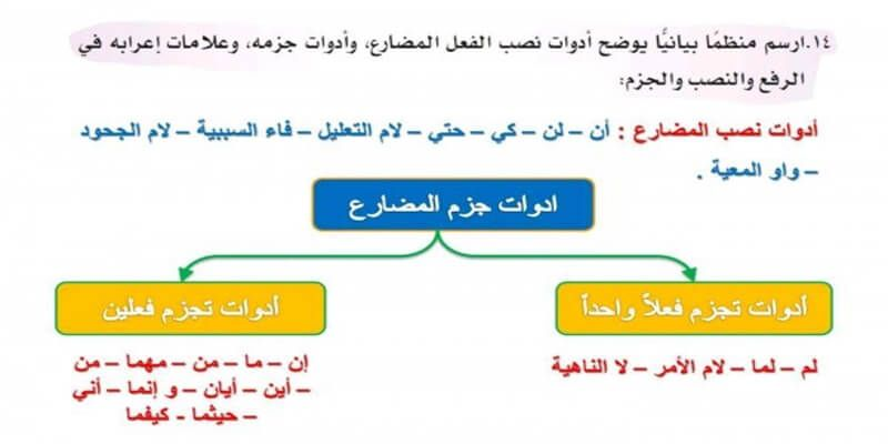 تعرف على حروف النصب والجزم وإعرابها فى 5 نقاط Learn Arabic Language Learning Arabic Language