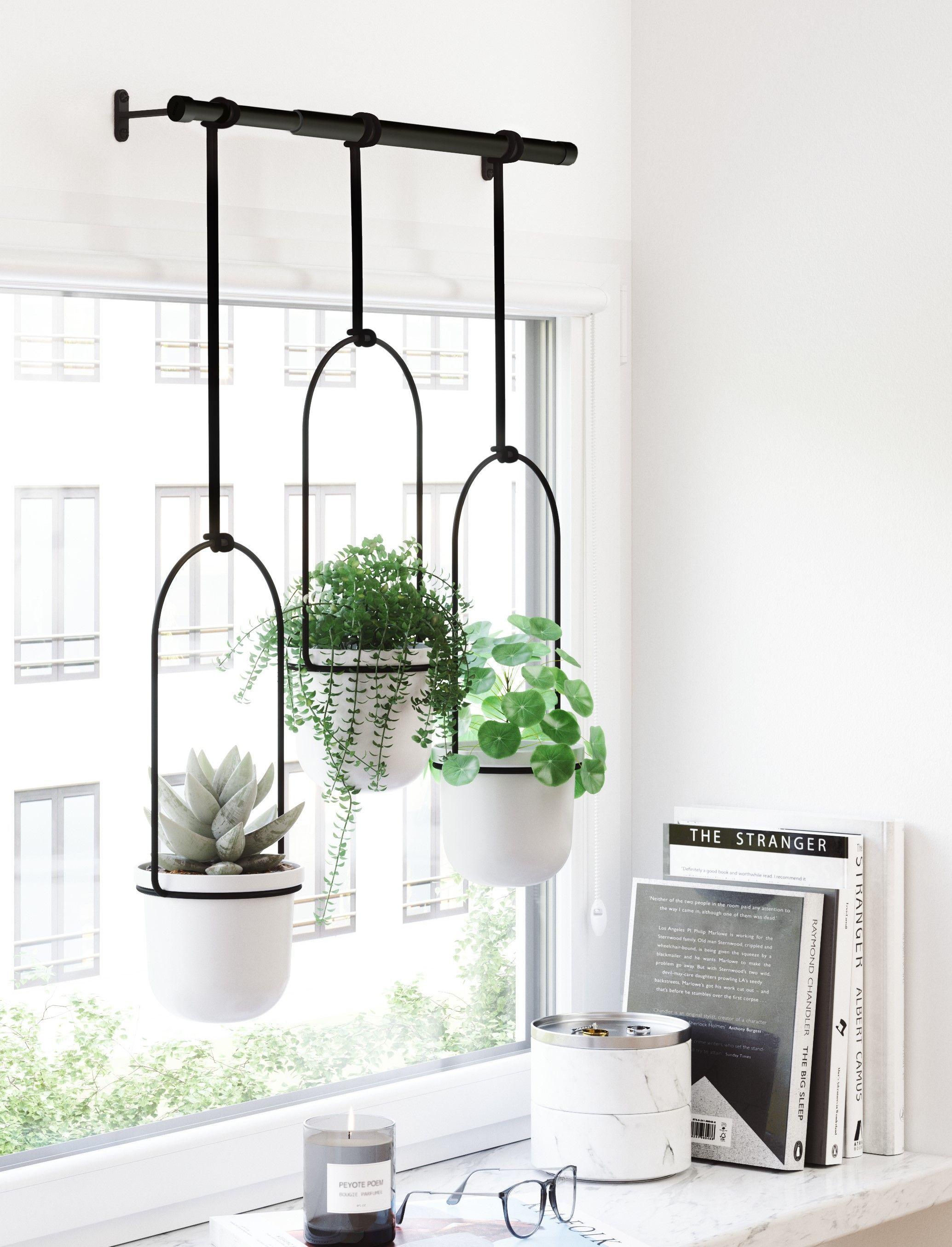 Patio Garden In 2020 Wall Planters Indoor Hanging Planters Indoor Hanging Plants Indoor