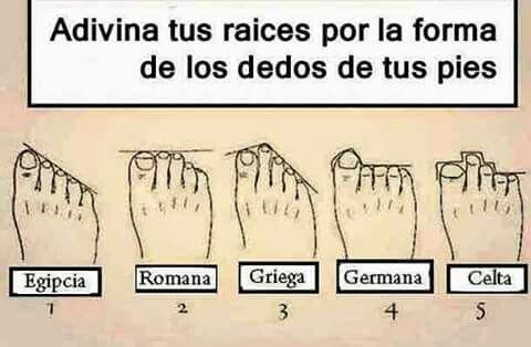 Adivina Tus Raices Por La Forma De Los Dedos De Tus Pies Curious Facts Memes Humor