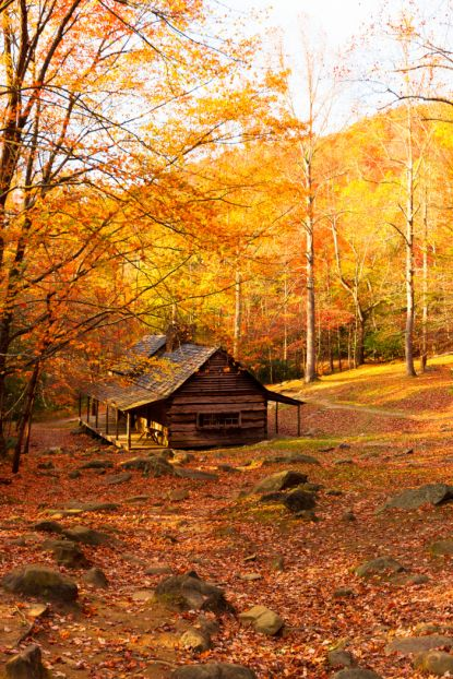 24 Reasons Fall is Best Spent in The Country