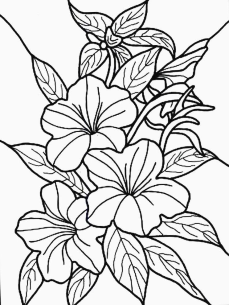 Pin By Christie Munday On Tiki Bar Party In 2020 Flower Coloring