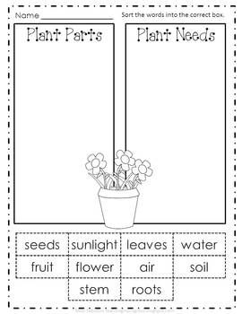 Plant A Garden: Science and Writing. Teachers Pay Teachers FREEBIE