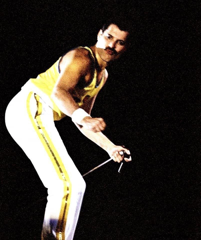 Freddie Mercury  #freddiemercuryquotes Freddie Mercury Passion Fan Club #freddiemercuryquotes Freddie Mercury  #freddiemercuryquotes Freddie Mercury Passion Fan Club #freddiemercuryquotes Freddie Mercury  #freddiemercuryquotes Freddie Mercury Passion Fan Club #freddiemercuryquotes Freddie Mercury  #freddiemercuryquotes Freddie Mercury Passion Fan Club #freddiemercuryquotes