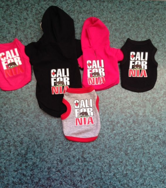 Show your dog's #californiapride with CA attire Available in XXS-XL. Call us (831) 625-1585!