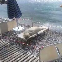 Sun time......Samos Island Beach, Greece