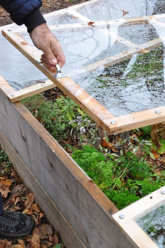 How to Build a Removable Cold Frame on top of your raised veg beds ...