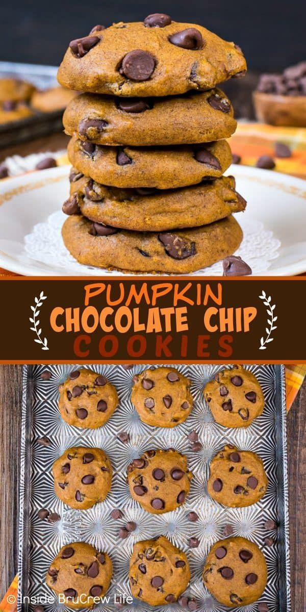 Pumpkin Chocolate Chip Cookies - these soft pumpkin cookies loaded with chocolate are a must make every fall. Make this recipe and watch everyone devour the entire batch in a hurry!  #pumpkin #cookies #fall #chocolate #homemade #pumpkindesserts #cookiejar #bakesale #chocolatechipcookies