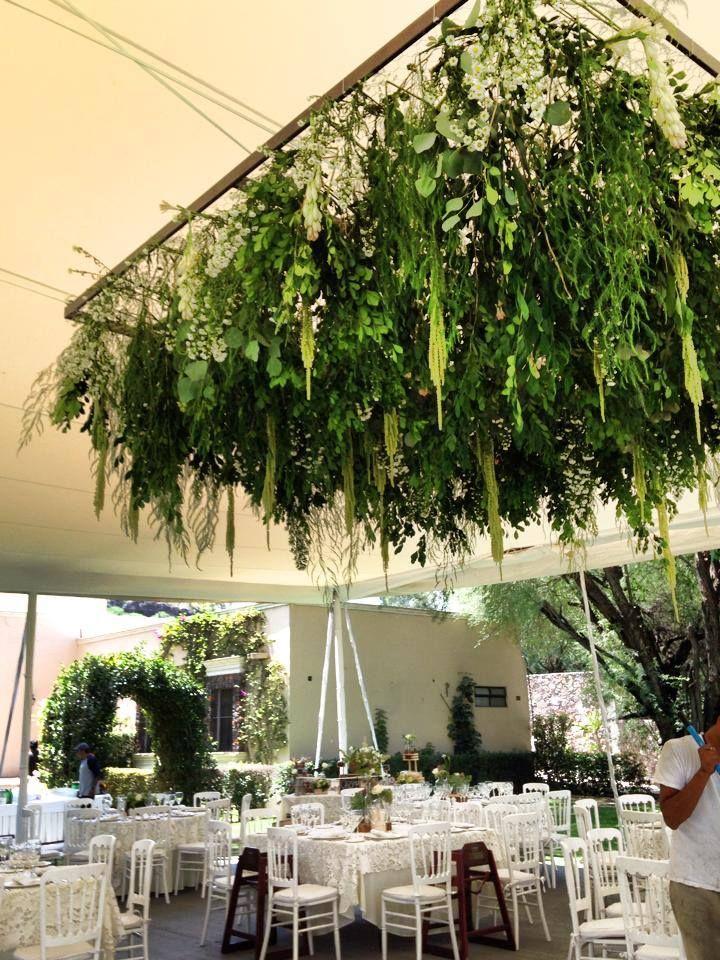 Jardin colgante cuadrado enredaderas decoraci n boda for Decoracion con plantas para fiestas