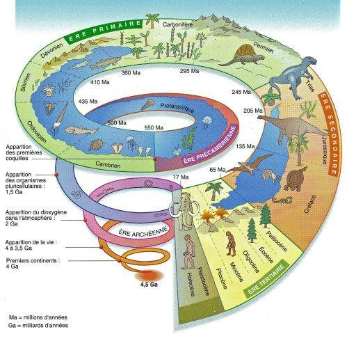 Diaporamas | Association Vendéenne de Géologie | Geologie, Pas le temps, Paleontologie