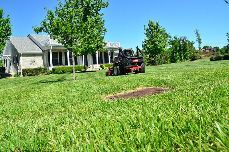 An inviting landscape for your business landscaping