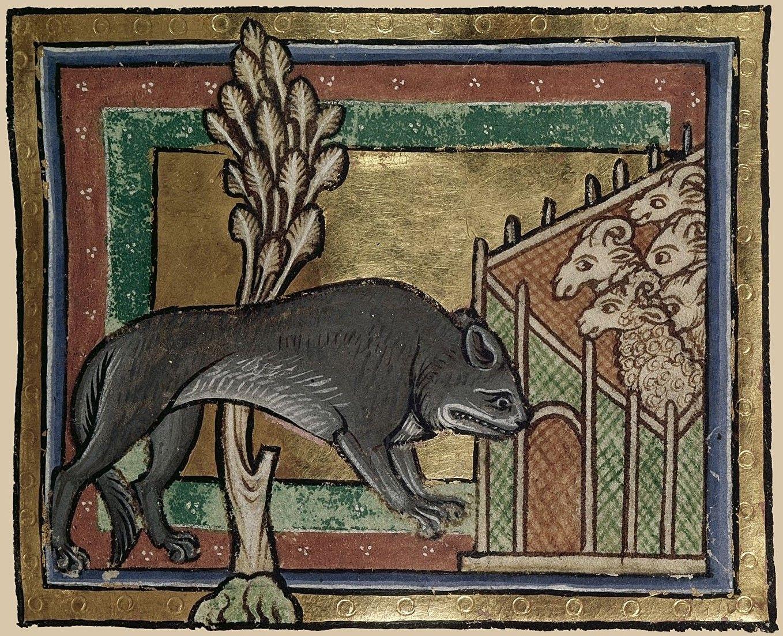 46++ Medieval wolf information