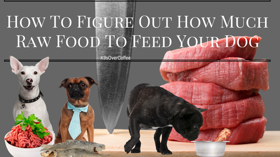 K9sOverCoffee | How To Figure Out How Much Raw Food To ...
