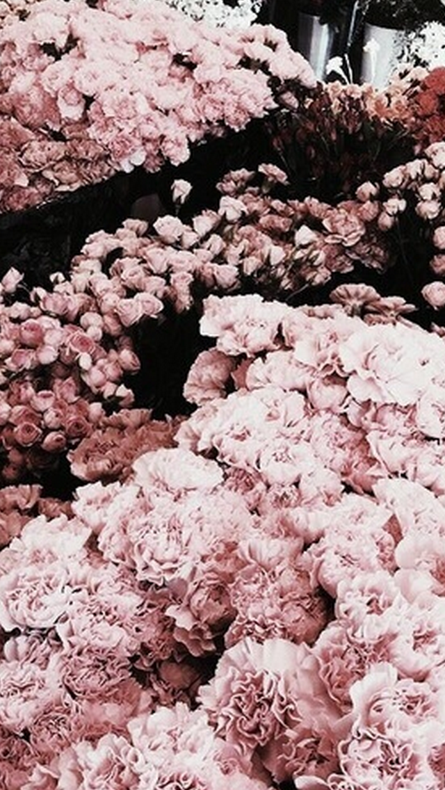 Rose Gold Aesthetic Wallpaper Iphone : aesthetic, wallpaper, iphone, Tumblr, Wallpaper, Iphone,, Background,, Iphone