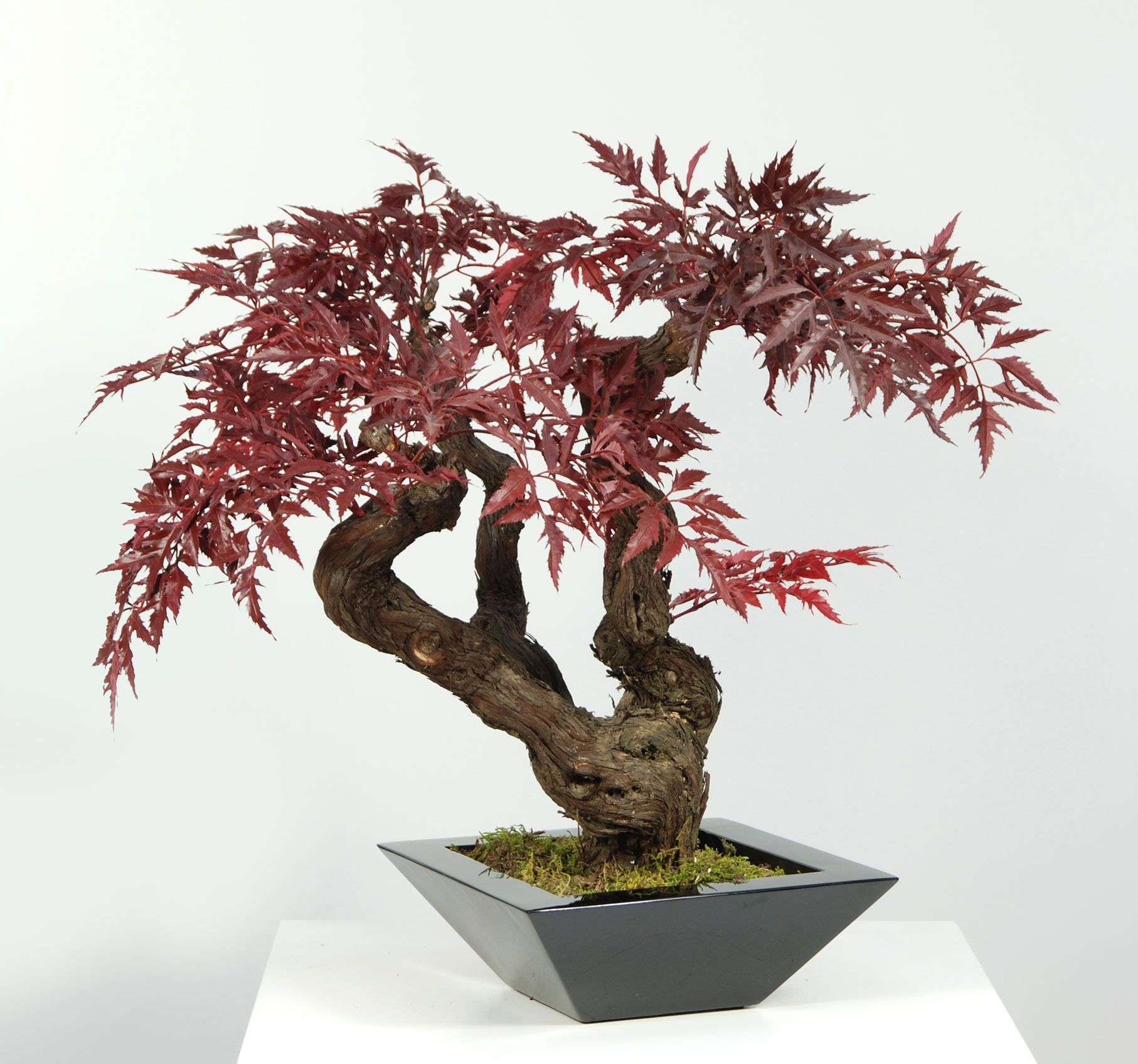 Artificial Red Maple Bonsai Tree Ideal For Table Decor For
