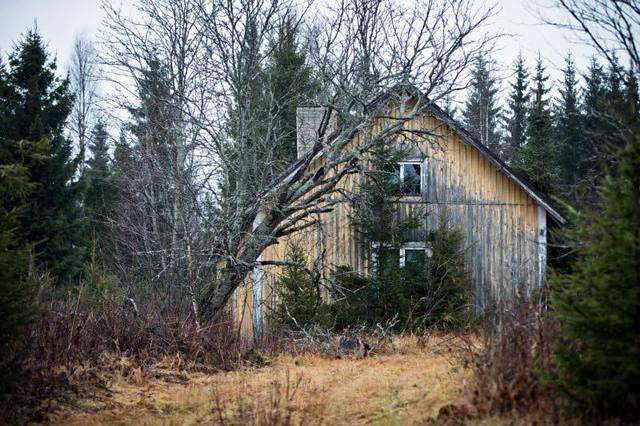 Pielavesi - Gray Tsunami #Finland