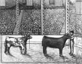 Neil Cattle Company Livestock Show Industry Drawing Designing