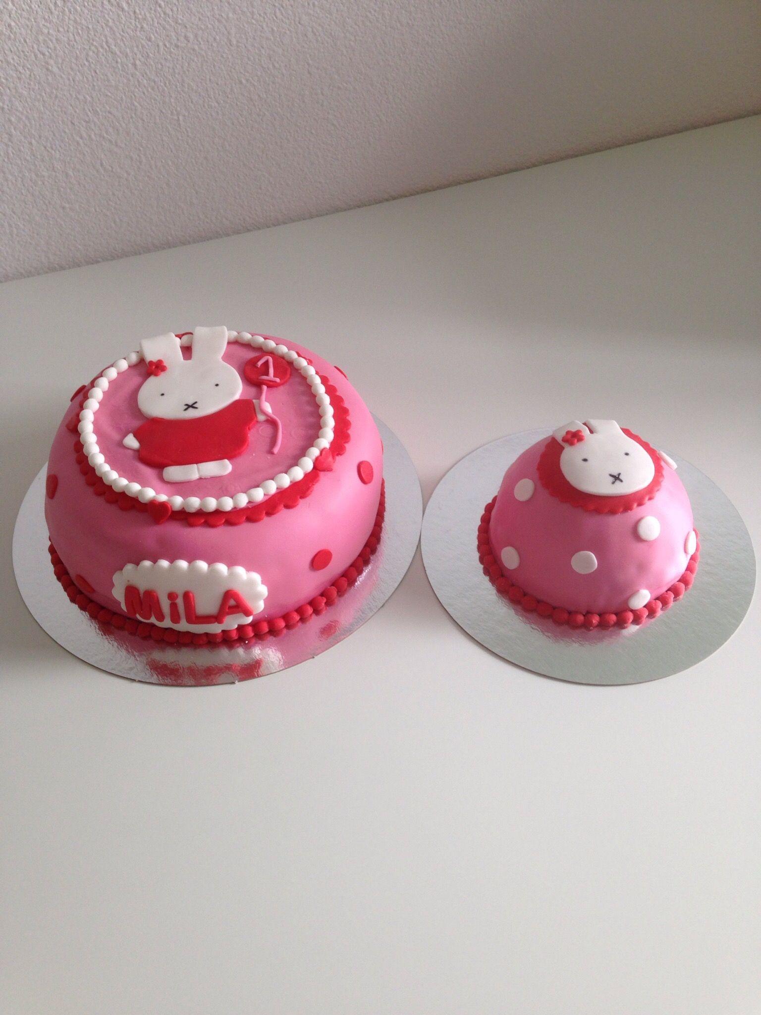 Nijntje en mini Nijntje taart