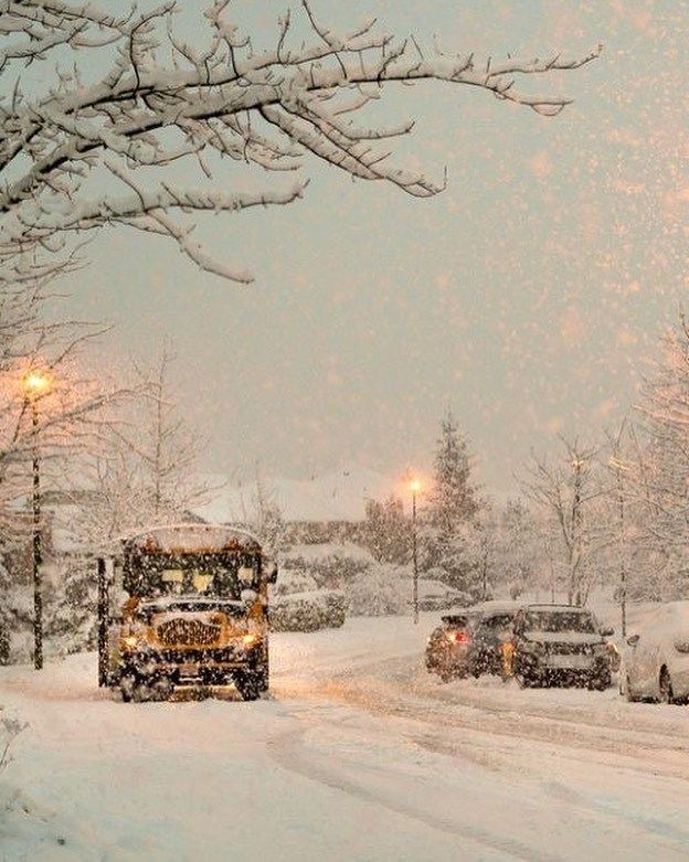 winter , snow, winter aesthetic #winter