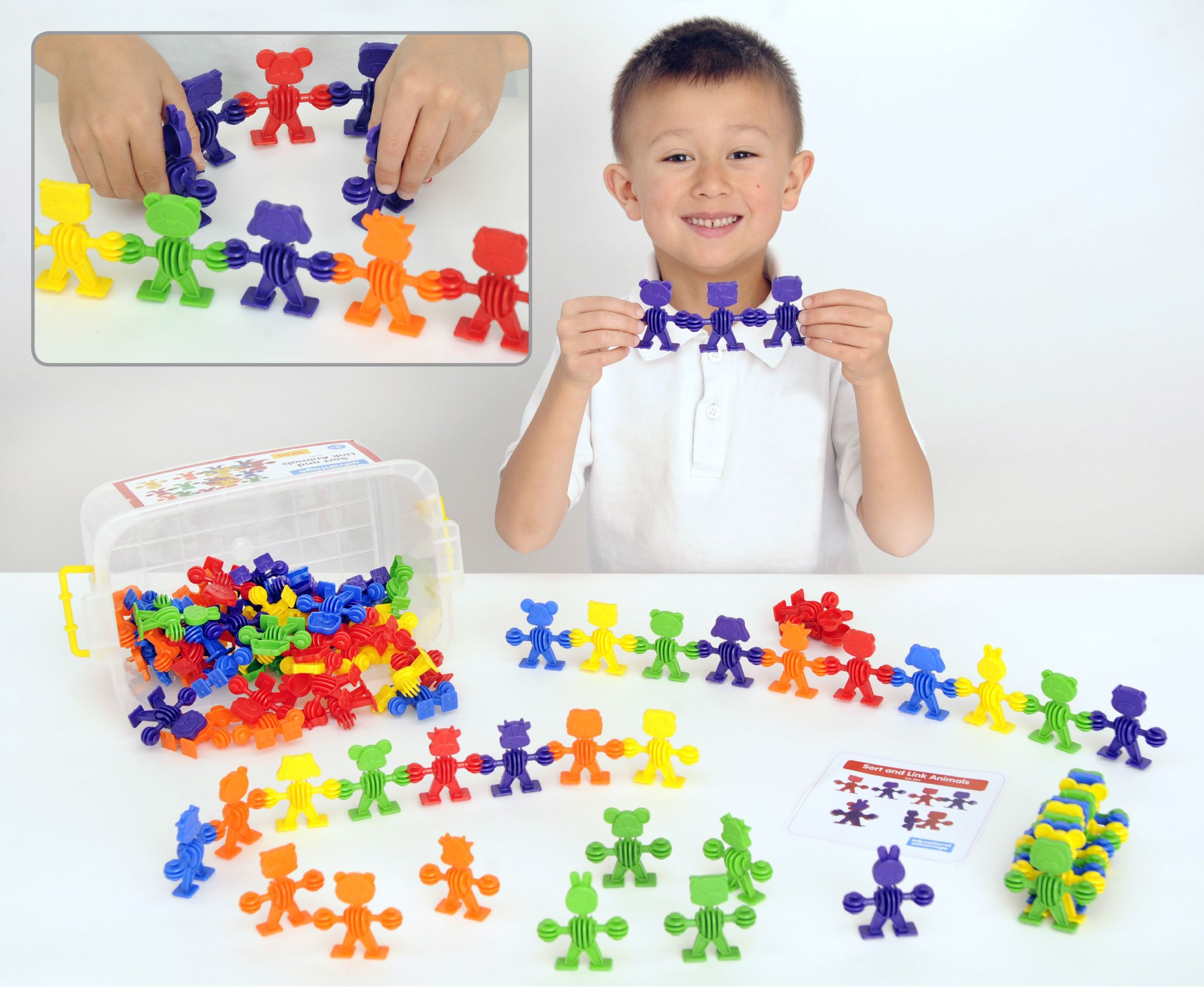 Ea 591 Sort And Link Animals This Class Sized Set Contains