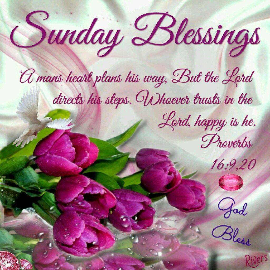 Sunday Blessings Sunday Love Pinterest Blessings Happy Sunday