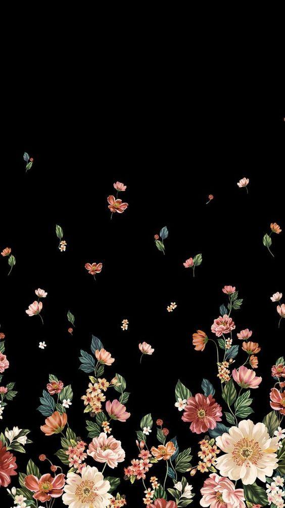 Background Bunga Hitam : background, bunga, hitam, Wallpaper, Fotografi, Abstrak,, Lukisan, Bunga,, Latar, Belakang