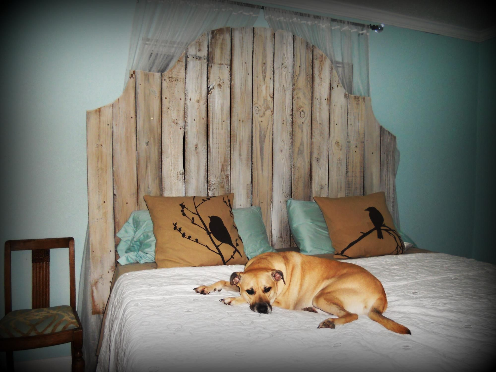Rustic headboard made from old fence pickets diy for Bedroom headboard ideas