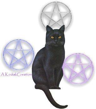 wiccan cat by wanderra