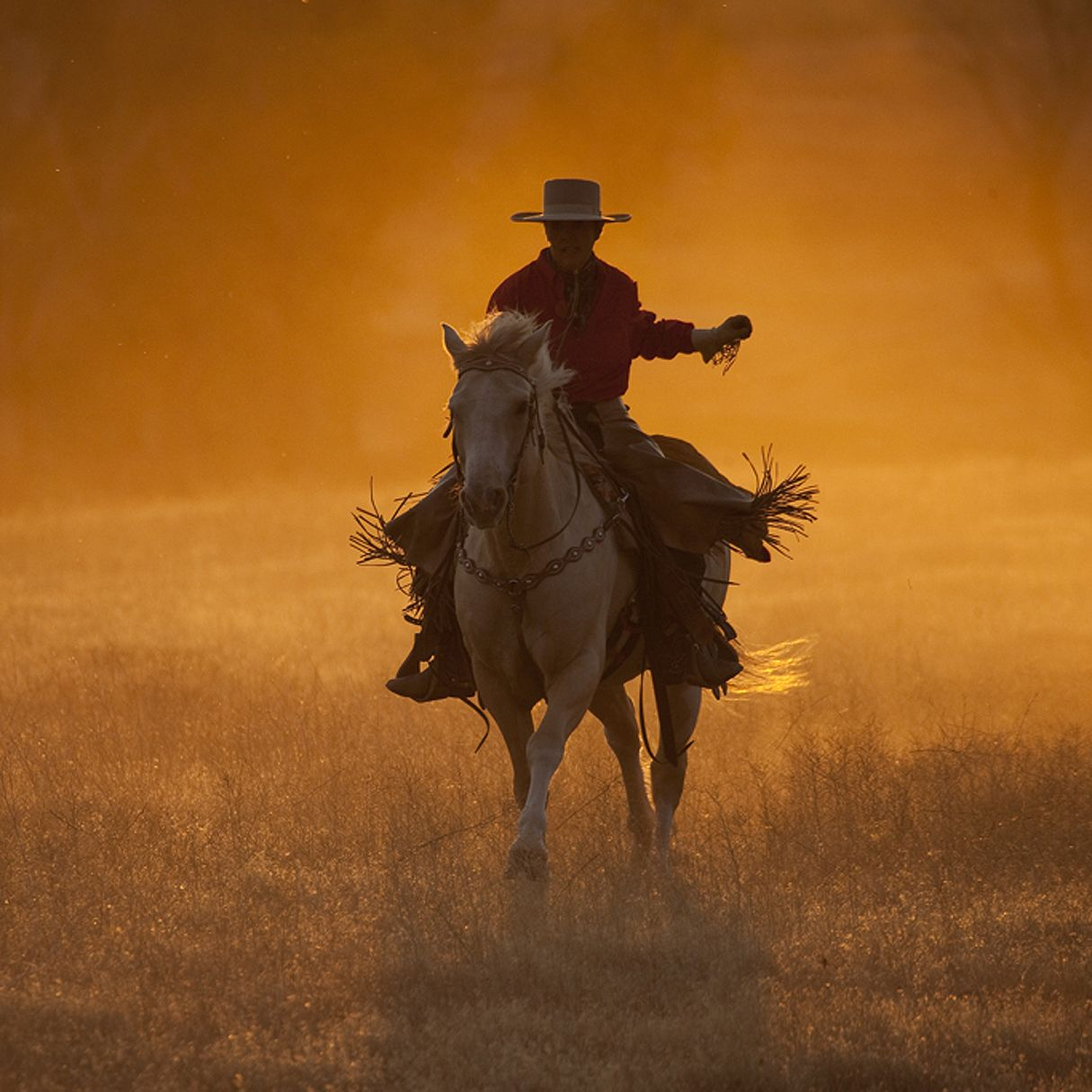 живые фото с ковбоями это время