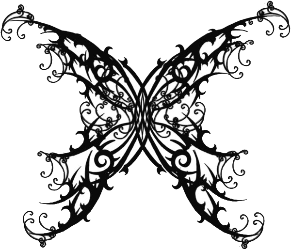 Wings  Angel Wings High Quality Photos And Flash Designs Of