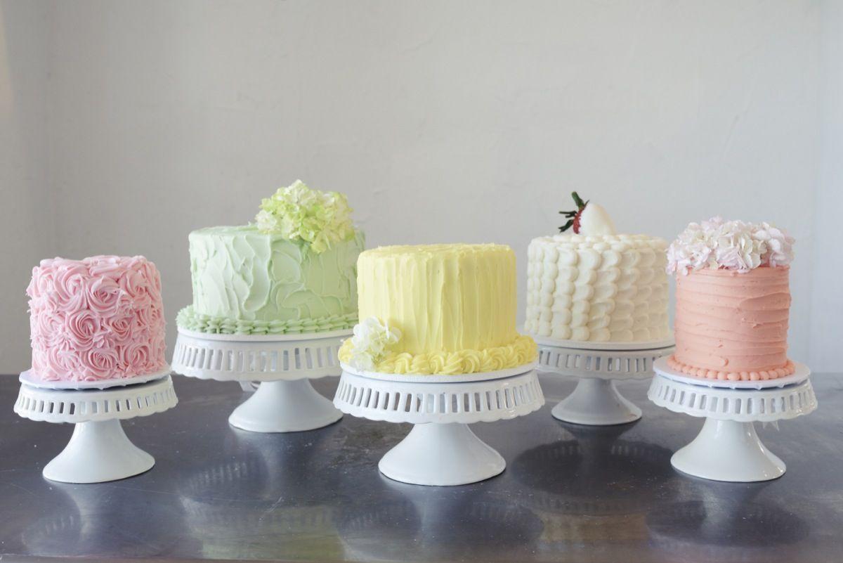 Frozen cake design images   StepbyStep Cake Design Tutorials to Know  Jans cakes