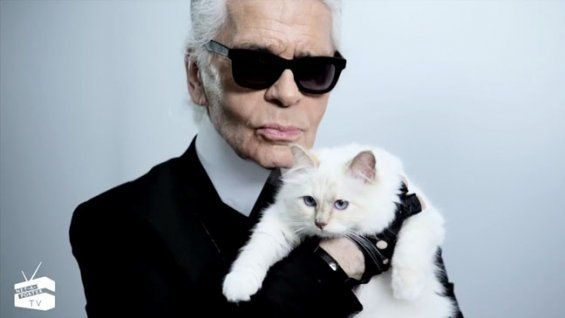 Karl Lagerfeld's Cat Choupette Stars in Net-a-Porter Fashion Promo