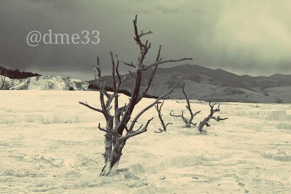 @YellowstoneNPS