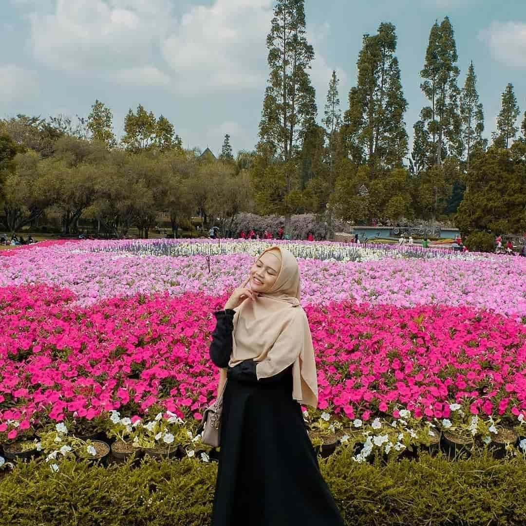 Taman Bunga Nusantara Pesona Keindahan Taman Berbagai Tema Taman Bunga Taman Bunga