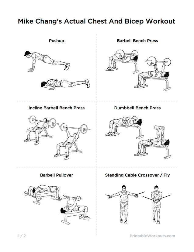 Mike chang   actual chest and bicep workout printable routine also rh pinterest