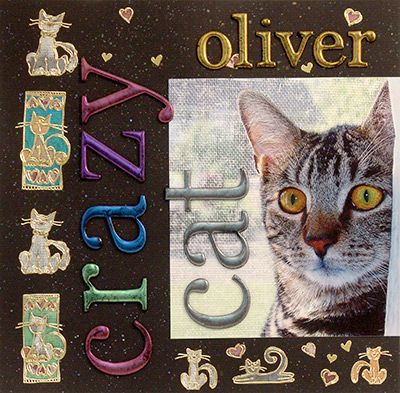 Crazy Cat Scrapbook Page Layout Scrapbooking Pinterest