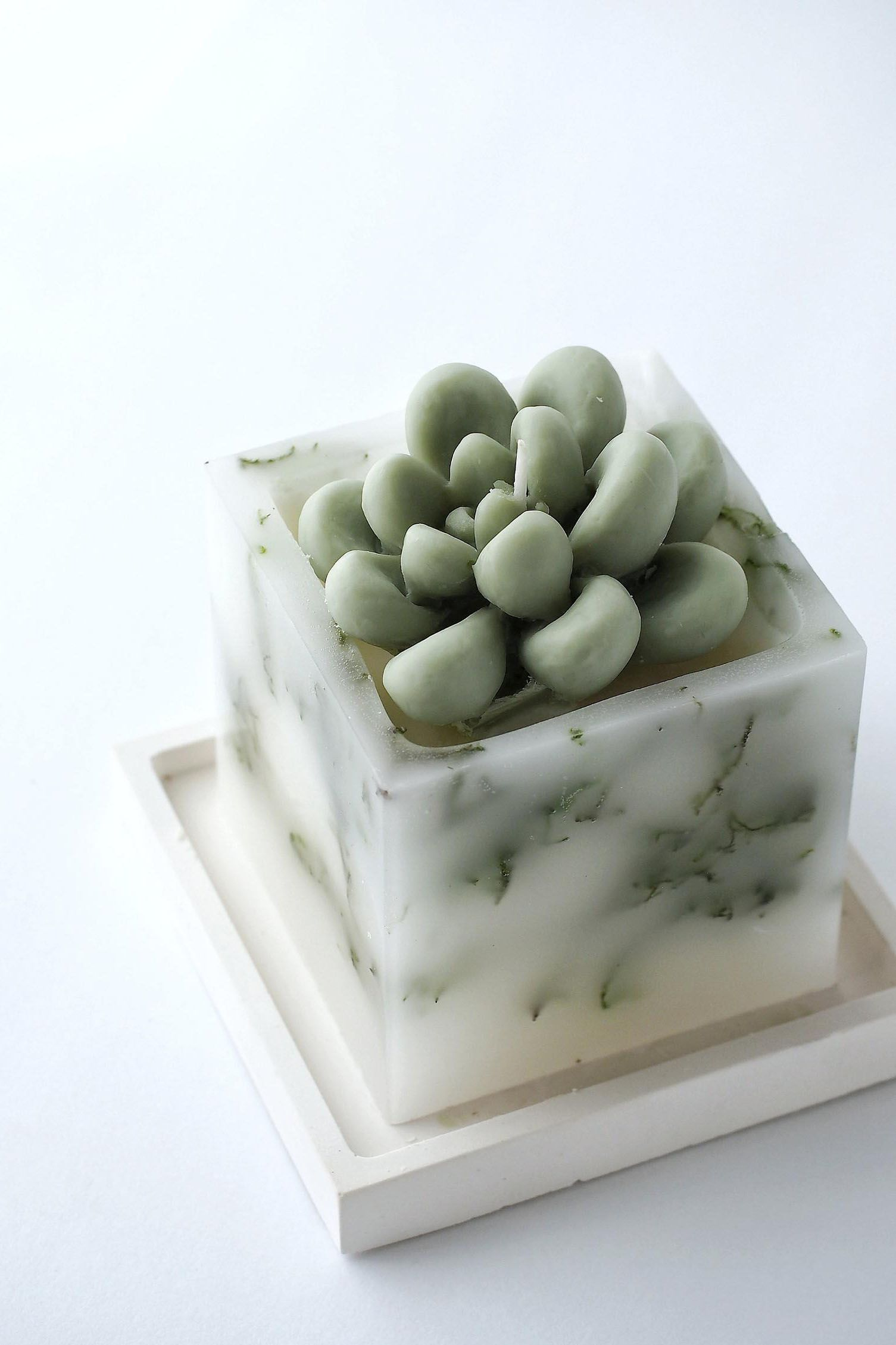 Natural ingredients and colors bring a feeling of nature, health and freshness to this moss and succulent candle.