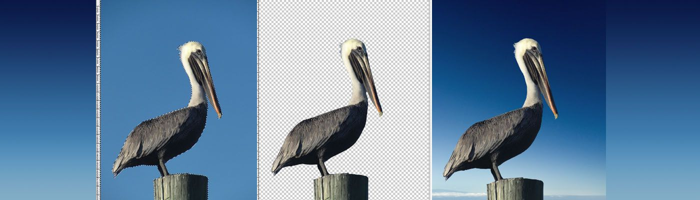 How to remove the background of an image magic wand