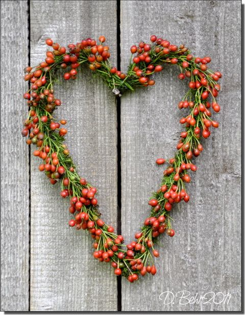 rosehip heart