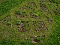 Magická záhrada