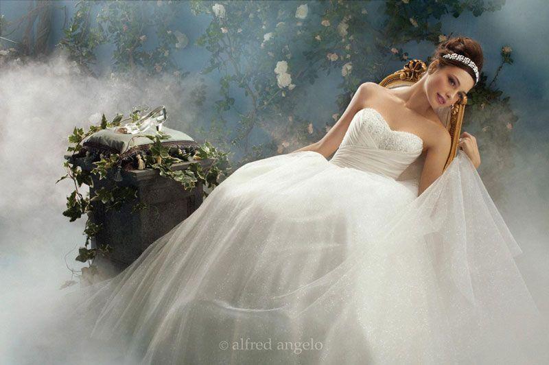Beautiful Disney inspired Cinderella princess dress by Alfred Angelo ...