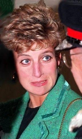 Untitled Princess Diana Lady Diana Princess Diana Rare