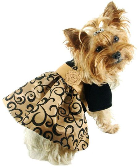 Dog Clothes -Cute Pet Dress, Doggie Dress, Doggy Dresses, Clothing ...