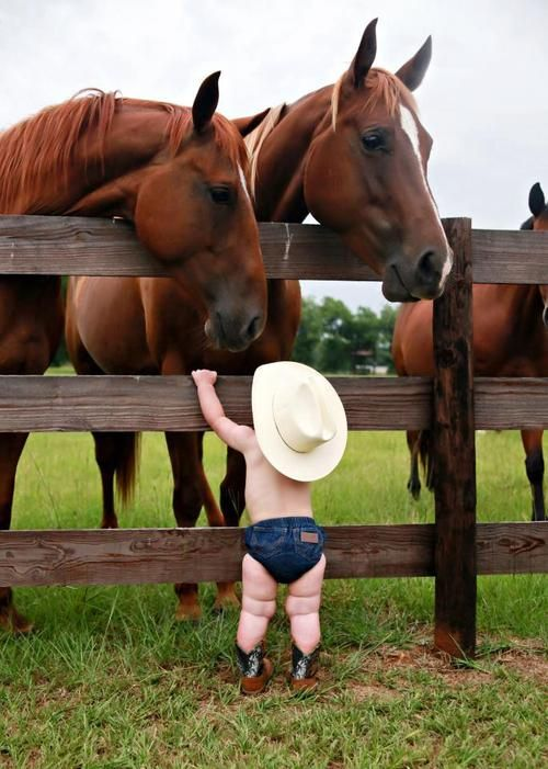 This reminds me of Faith when she was little. She loved horses (and all animals), she had no fear of them. They loved her too! :o)