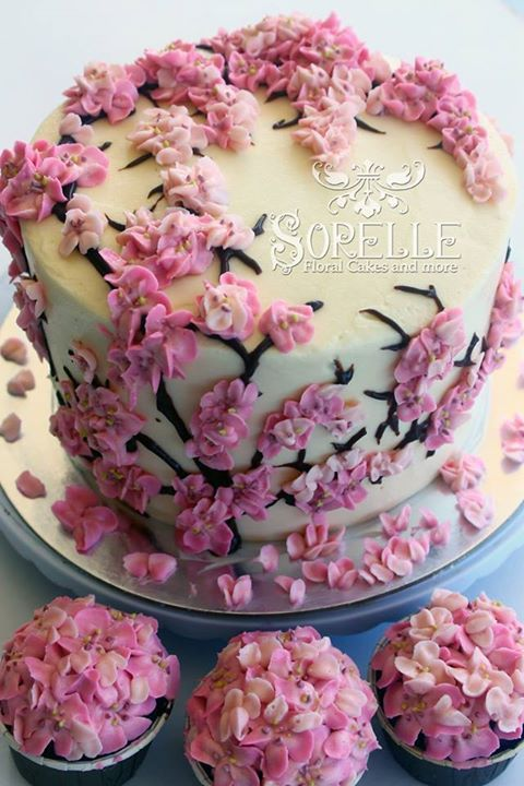 Piped Cherry Blossoms Cakes Cake Decorating Cake Floral Cake