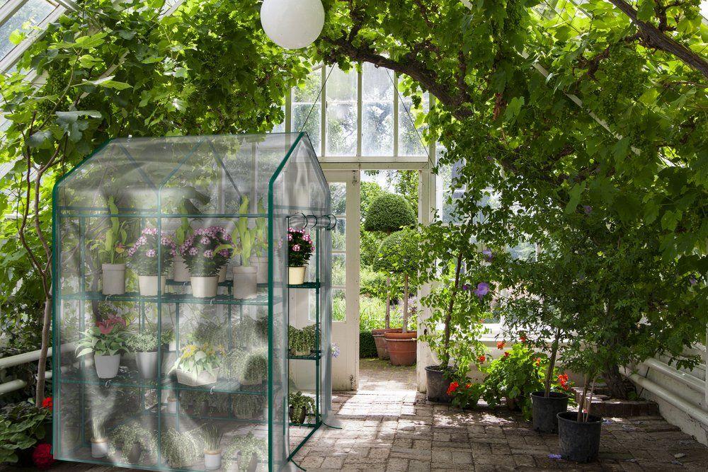 Home Complete Hc 4202 Walk In Greenhouse Indoor Outdoor 400 x 300