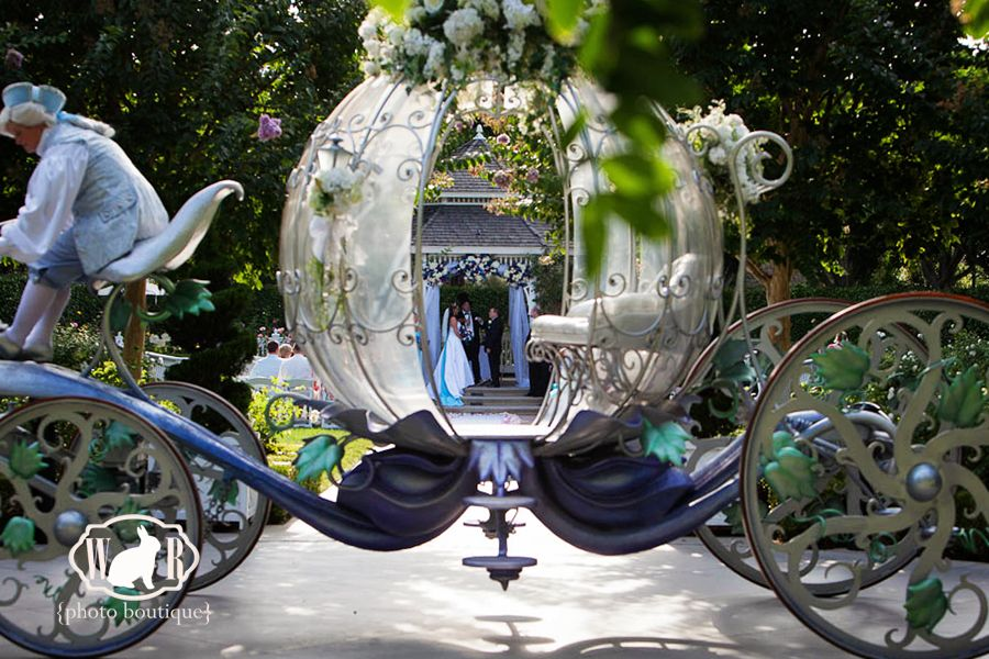 Wedding Designs Spotlight On The Crystal Coach